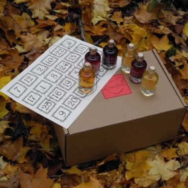 Advent Apotheker Set (Set of 24 Liqueur Miniatures)