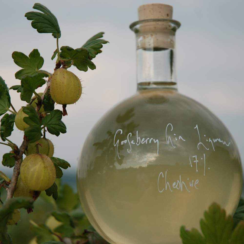 A Ball of Gooseberry Gin