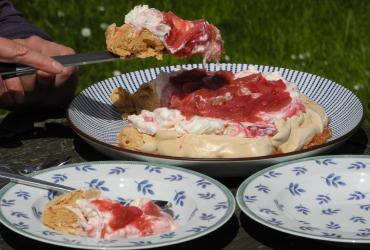 Rhubarb and Mead Pavlova