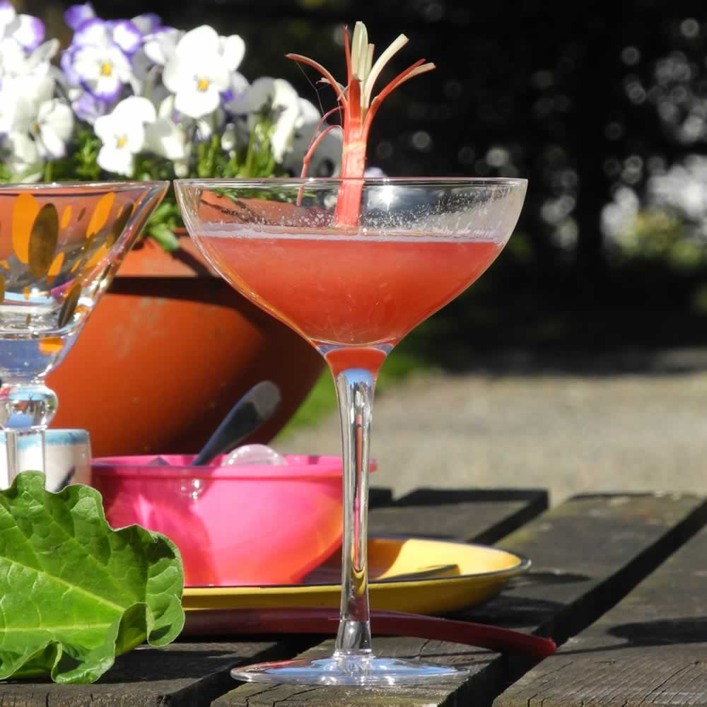 The Royal Rhubarb and Ginger Cosmopolitan Cocktail