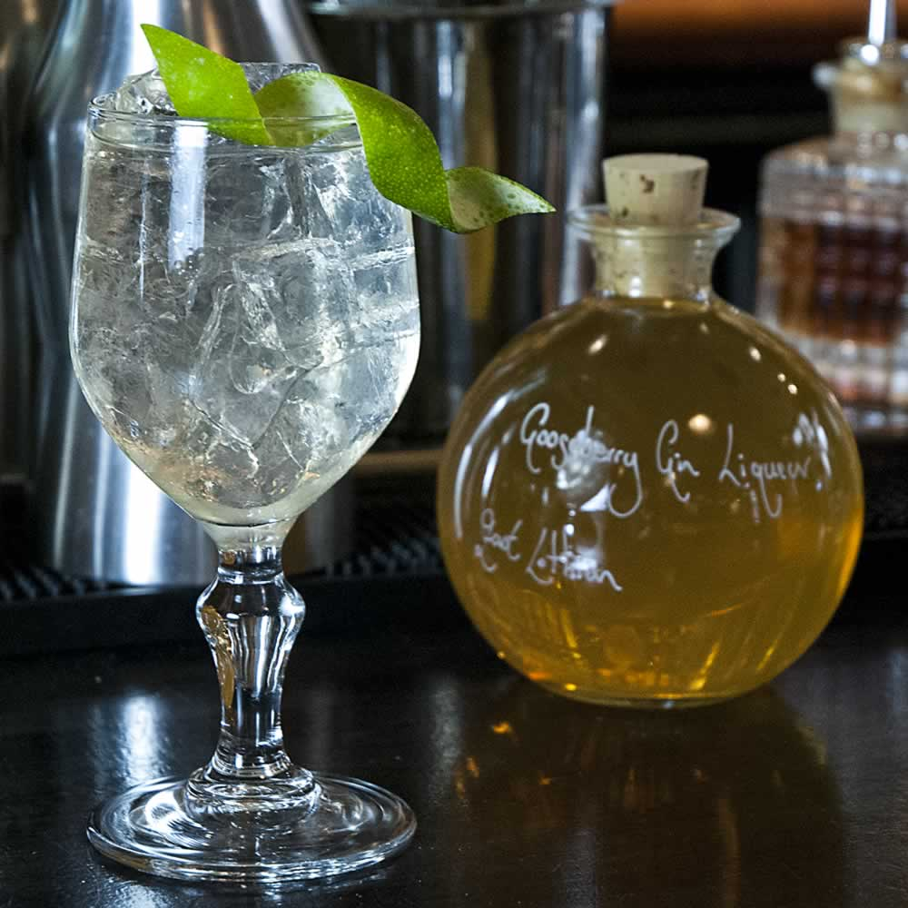 The Evoque Cocktail, aka Gooseberry Gin and Tonic