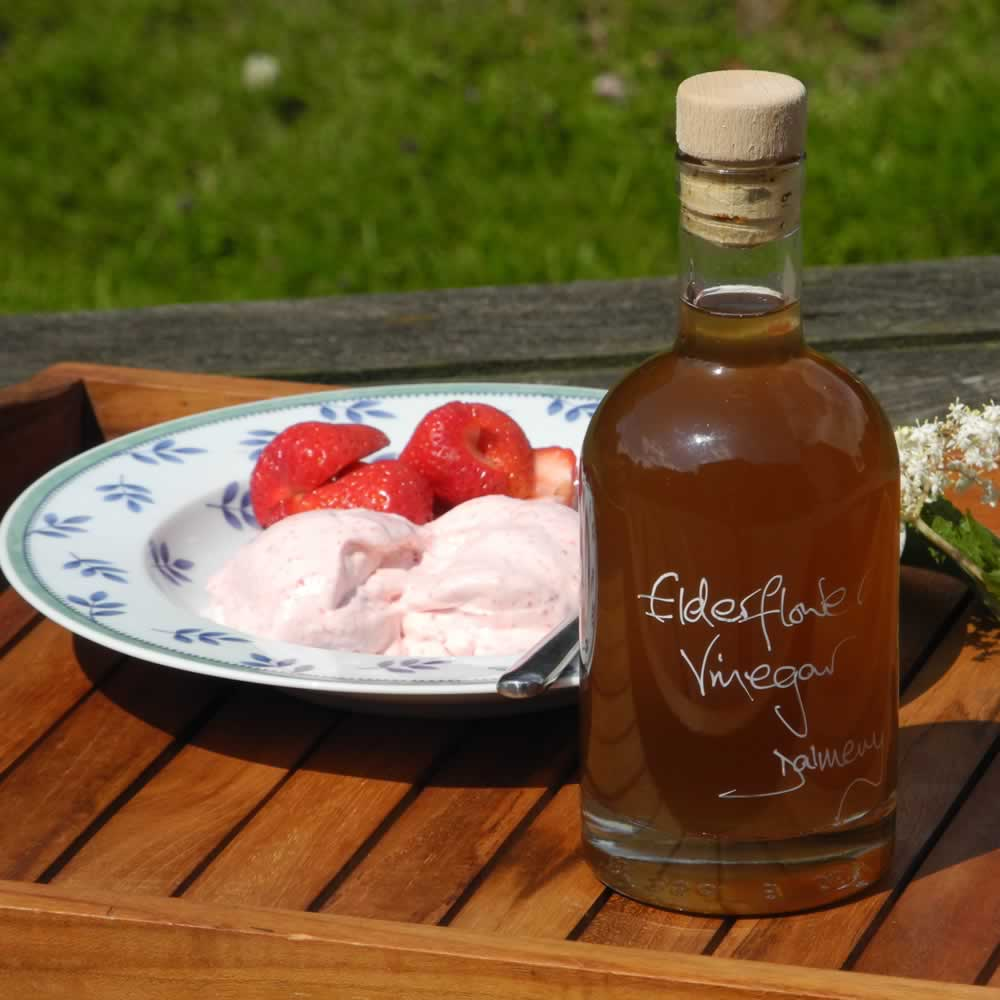 Elderflower Vinegar drizzled on fresh strawberries and Strawberry Ice Cream