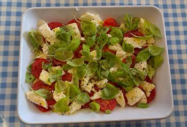 A simple tomato and basil salad