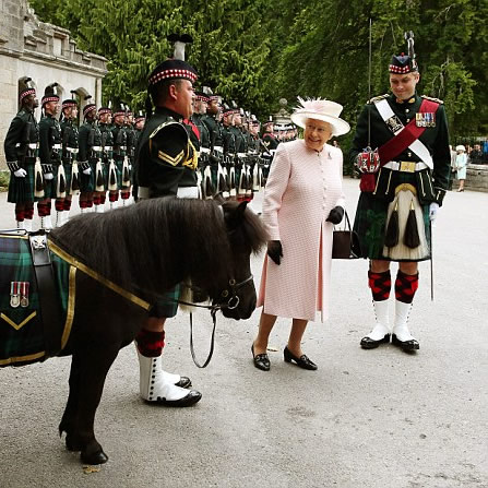 The Queen's Guard on parade in 2015 at Balmoral, with Cruachan IV the Regimental mascot.