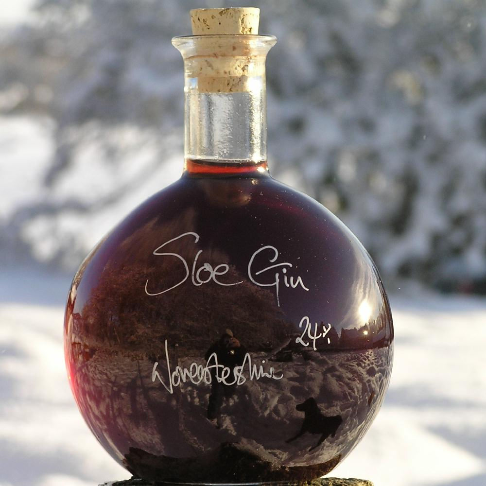 Our World Champion Sloe Gin. Seriously hot stuff!